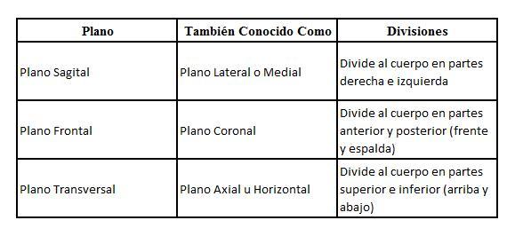 Entrenamiento de Carga Vectorial (ECV). – Entrenamiento Total