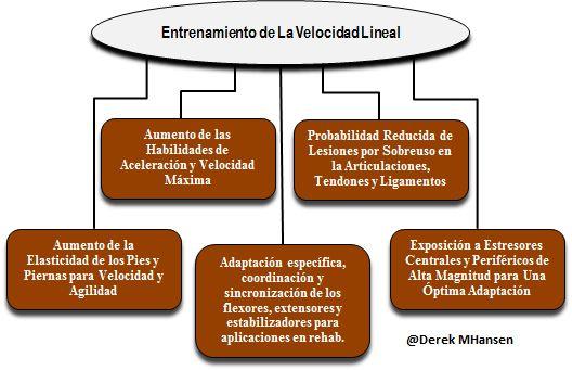 VelocidadReserva2