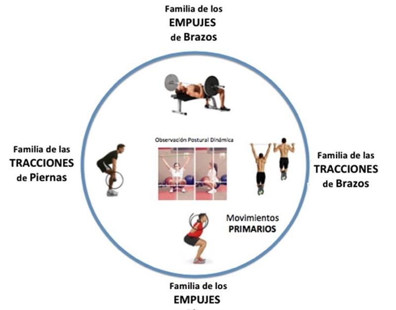 Las Familias de la Fuerza. – Entrenamiento Total